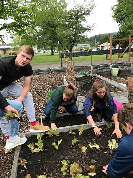 COURTESY PHOTO: LUPE HOBGOOD - Ethan Sirr, Tina Reed and Taylor Baurer help plant the CHS Healthy Starts Garden.
