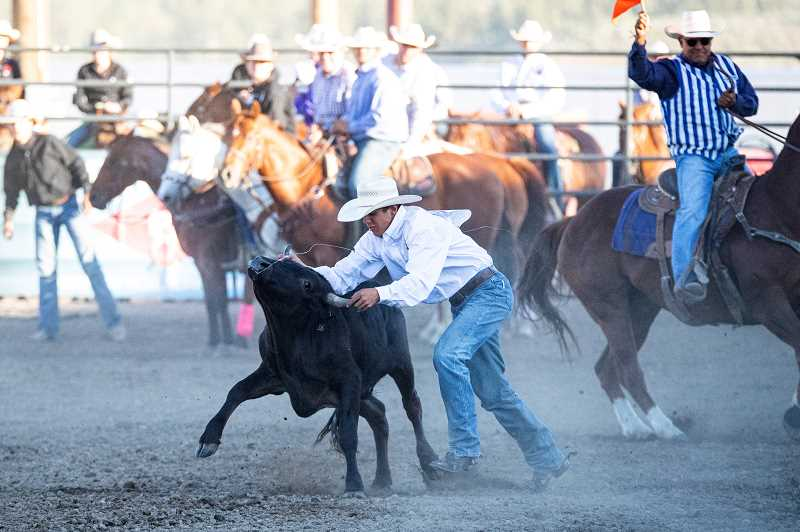LON AUSTIN - Culver's Coy Aldrich took first in both the team roping headers and reined cow horse events during the Oregon High School State Finals Rodeo competition at the Crook County Fairgrounds.