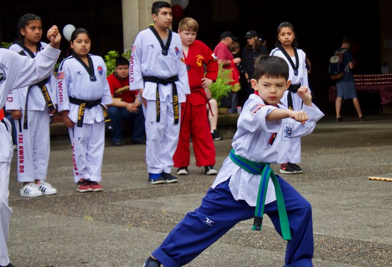 PMG FILE PHOTO: CHRISTOPHER KEIZUR  - Devin showed off his taekwondo skills during a World Champion Taekwondo demonstration at the 2018 Strawberry Short Course Festival.