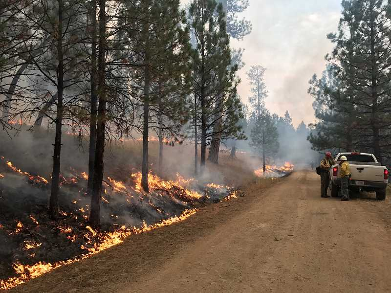PHOTO SUBMITTED BY OCHOCO NATIONAL FOREST  - Firefighters battle the Desolation Fire, which erupted near Prineville late last summer.