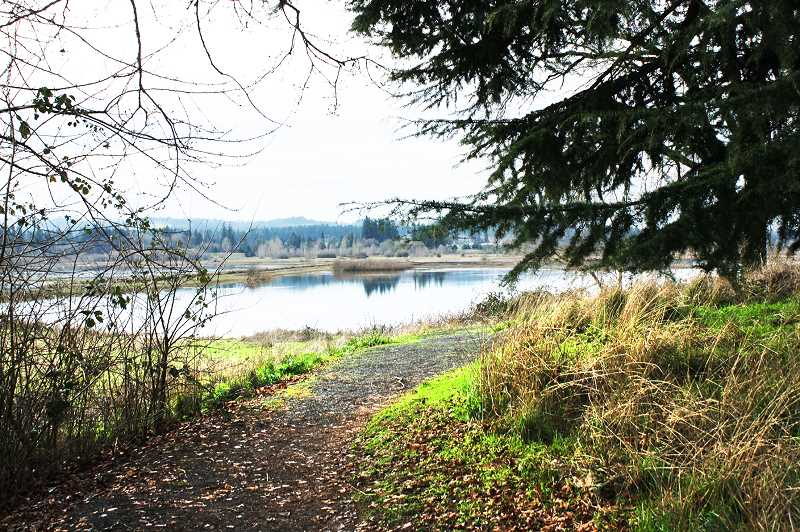 SUBMITTED PHOTO - The Tualatin River National Wildlife Refuge in Sherwood offers a quiet spot amid the chaos of the city.