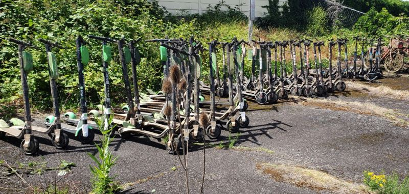 MCSO PHOTO - The Multnomah County Sheriff's Office ended up with a haul of 57 electrics scooters and bikes. Most were presumably chucked into the river by locals.