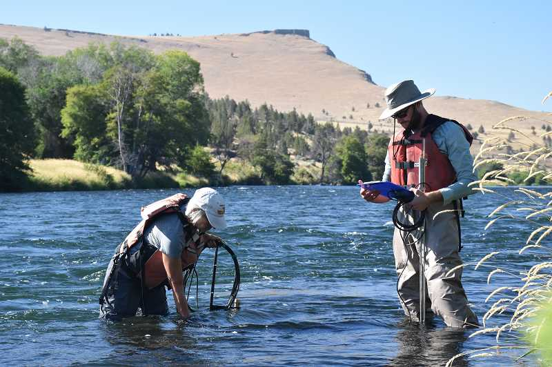 SUBMITTED PHOTO - Environmental technicians Elayne Barclay and Nathan Stotts, who work at the Pelton-Round Butte Hydroelectric Project, take samples for the Deschutes Water Quality Study. June has been a good month for the fisheries impacted by the Pelton-Round Butte dams, highlighted by salmon returning to Whychus Creek.