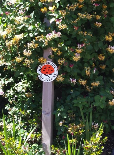 COURTESY PHOTO - Pesticide-free zones aim to provide safe areas for residents, pollinators and streams.