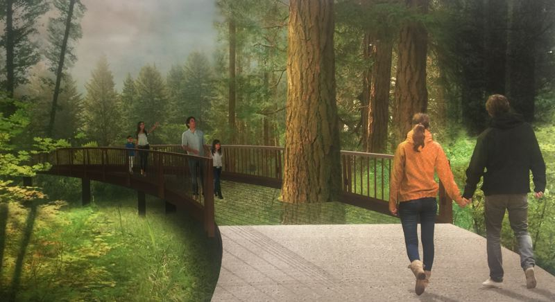 COURTESY LEACH BOTANICAL GARDEN - The aerial tree walk is part of a multi-phase plan to develop the upper level of Leach Botanical Garden in Southeast Portland.