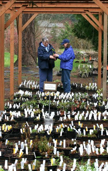 PMG FILE PHOTO - Literary readings, lecture series, weddings and plant sales provide revenue to help cover the cost of operating Leach Botanical Garden.