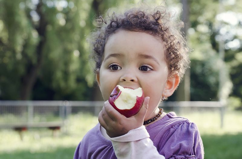 PHOTO COURTESY OF SUMMER MEALS OREGON - A preschooler enjoys an apple courtesy of a Summer Food Service Program. This summer, a Meals 4 Kids program will feed children at Portland parks, the Midland Library and various Home Forward locations.