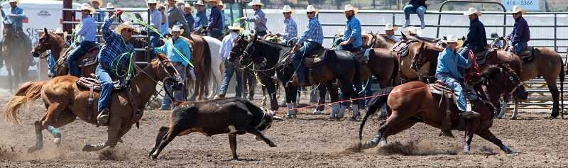 LON AUSTIN/CENTRAL OREGONIAN - McKennan Buckner, far right, and roping partner Bill Justus finish second in the first go round of team roping at the Crooked River Roundup with a time of 7.1 seconds. Buckner is from Powell Butte, while Justus is from Haines.