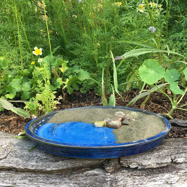 COURTESY PHOTO - If sand is added to bee baths, then it also attracts butterflies.