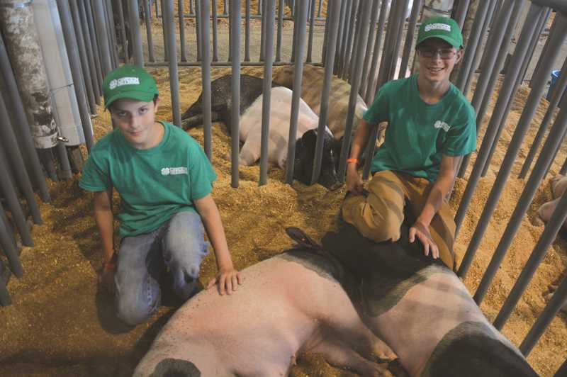 PMG FILE PHOTO - Livestock showings by several area schools will be among the attractions at the Marion County Fair, Thursday through Sunday, July 11-14.