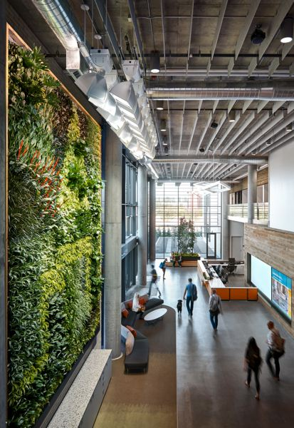 COURTESY: BANFIELD PET HOSPITAL - Banfield Pet Hospital's corporate headquarters, located in East Vancouver, was thoughtfully designed with pets in mind. It houses more than 800 associates and more than 200 dogs that accompany them to work.