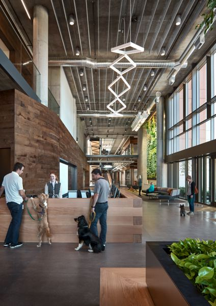 COURTESY: BANFIELD PET HOSPITAL - Banfield Pet Hospital's 206,000 square-foot corporate headquarters, referred to as Central Team Support, opened in June 2016 on 17.5 acres in Vancouvers Columbia Tech Center.