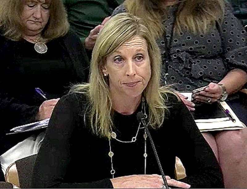COURTESY PHOTO - Portland attorney Brenda Baumgart testified Monday, July 8, about her preliminary investigation into workplace threats after public statements by Sen. Brian Boquist.