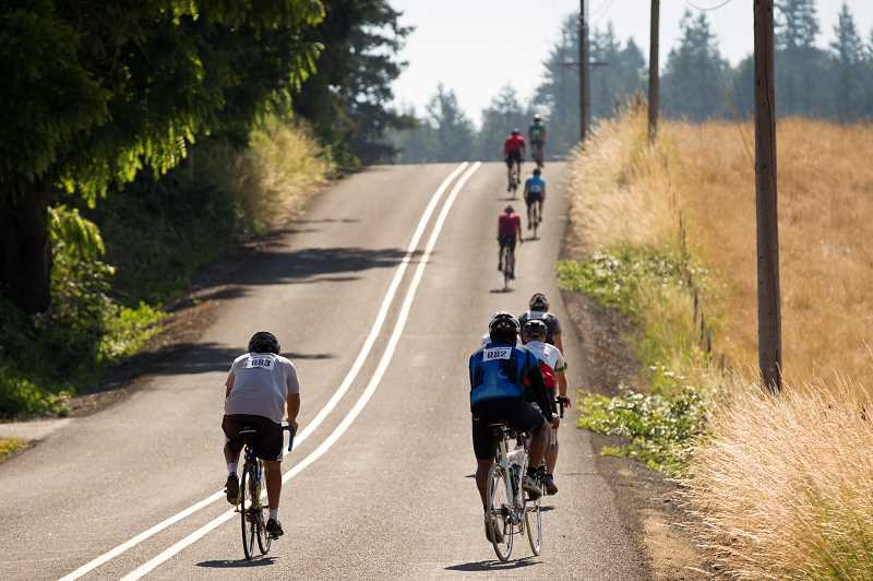 PMG PHOTO/JAIME VALDEZ - Bicyclists make their way up through rural roads during Wilsonvilles second annual Salmon Cycling Classic bicycling event.