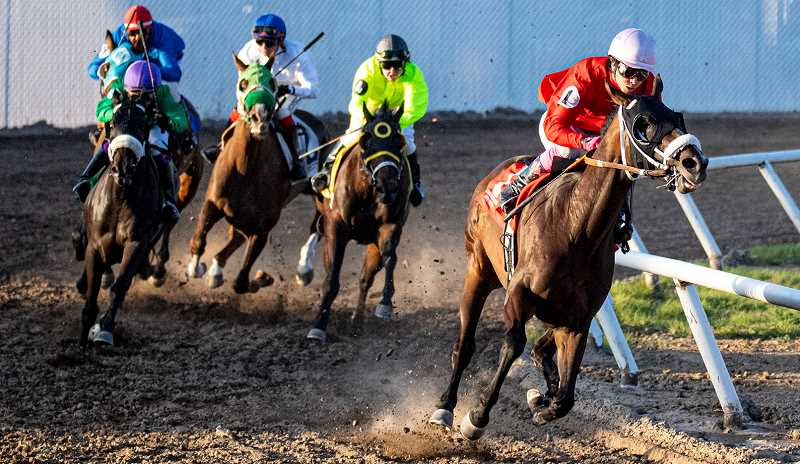 LON AUSTIN/CENTRAL OREGONIAN - Eduardo Gutierrez-Sosa on Fantastic Chloe runs away from the field during the second race Wednesday night at the Crooked River Roundup Race Meet. Races continue through Saturday night.