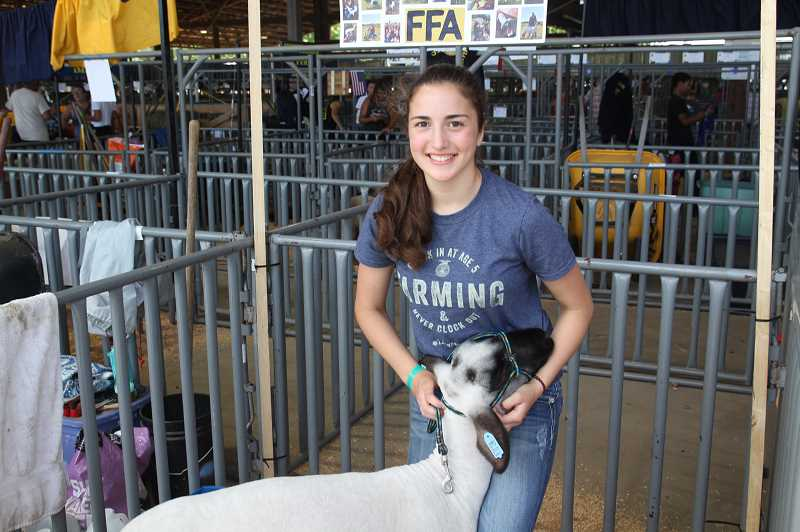 PMG PHOTO: JUSTIN MUCH - Artemis Anderson of Mount Angel preps Duke for a show at the Marion County Fair Friday, July 12.