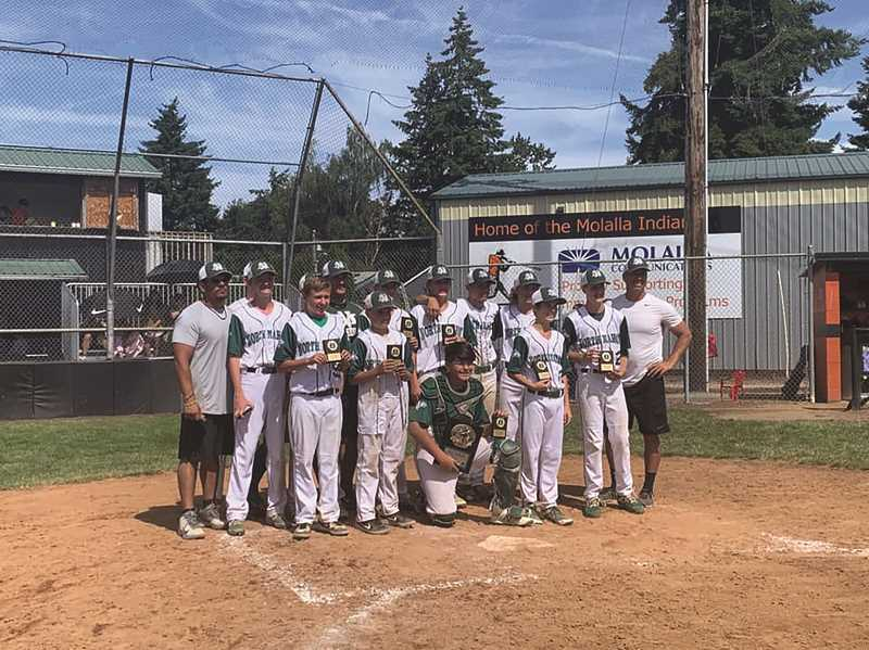 COURTESY NORTH MARION YOUTH ATHLETICS - North Marions' Senior American baseball team won went 4-0 in the county tournament to claim the top seed heading into the state tournament this weekend.