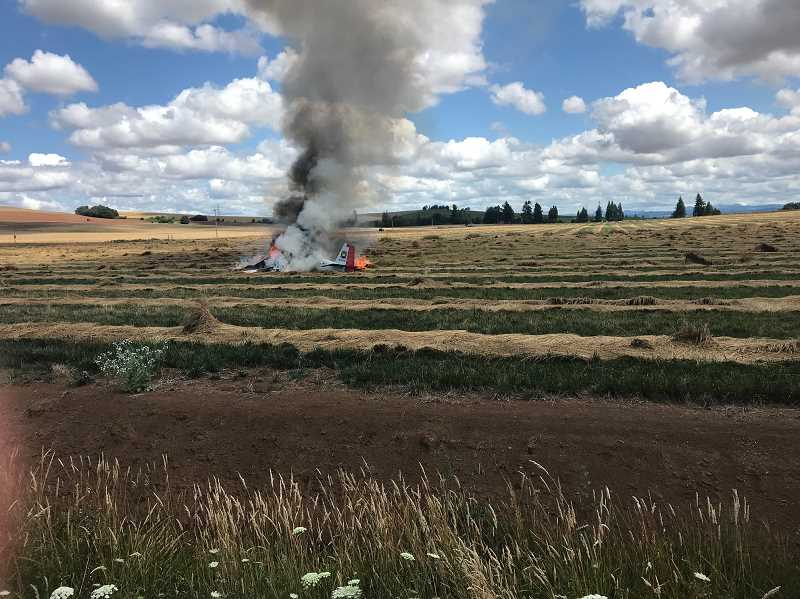 COURTESY PHOTO: MCSO - Eugene Mitchell, of Portland, made an emergency landing in a Marion County Field on Monday, July 16 after his plane caught fire in mid-air.