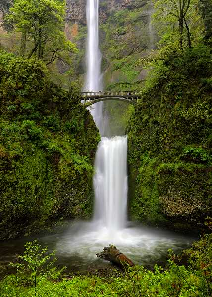 COURTESY PHOTO - The West Linn Adult Community Center is planning a field trip to Multnomah Falls, one of Oregons most popular and beautiful attractions. Sign up now to go along.