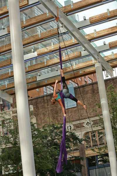 COURTESY PHOTO  - A-WOL Dance Collective will present Snow Leopard showcasing aerial artists under the stars, suspended from old growth trees in Mary S. Young Park. One of the dancers is Alicia Doerrie, a West Linn High alumna, pictured here in action in a Portland building.