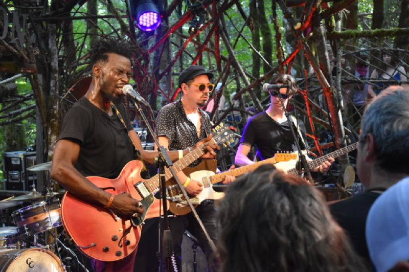 PMG PHOTO: SHANNON O. WELLS - Pickathon, held at Pendarvis Farm in Happy Valley, features bands in different settings, including the Woods Stage, where Black Pumas, fronted by singer Eric Burton, added a potent dose of neo-psychedelic soul at the 2018 event.