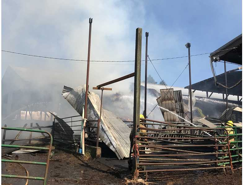 PHOTO COURTESY OF TVF&R - Crews from Tualatin Valley Fire & Rescue mop up a blaze that consumed a barn near the junction of Wilsonville and Edminstin roads on Sunday afternoon.