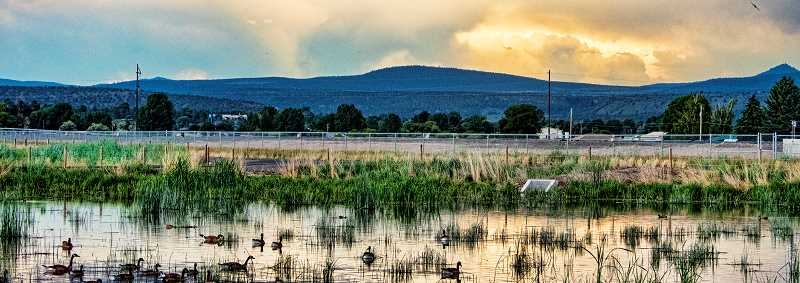 LON AUSTIN/CENTRAL OREGONIAN - Geese swim in the foreground as a thunderstorm rolls through Prineville earlier this month. The Crooked River Wetlands Complex is a great place to see wildlife, especially water fowl. In addition, the complex has more than five miles of hiking trails and some beautiful scenery.