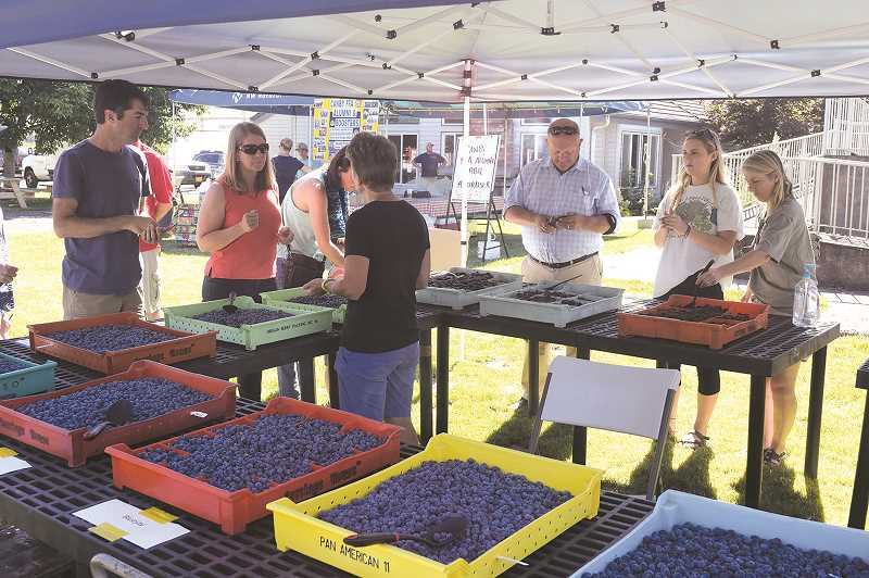 PMG FILE PHOTO: JOHN BAKER - The North Willamette Research and Extension Center in Aurora will have its annual open house on Wednesday, July 31, from 4-7 p.m.
