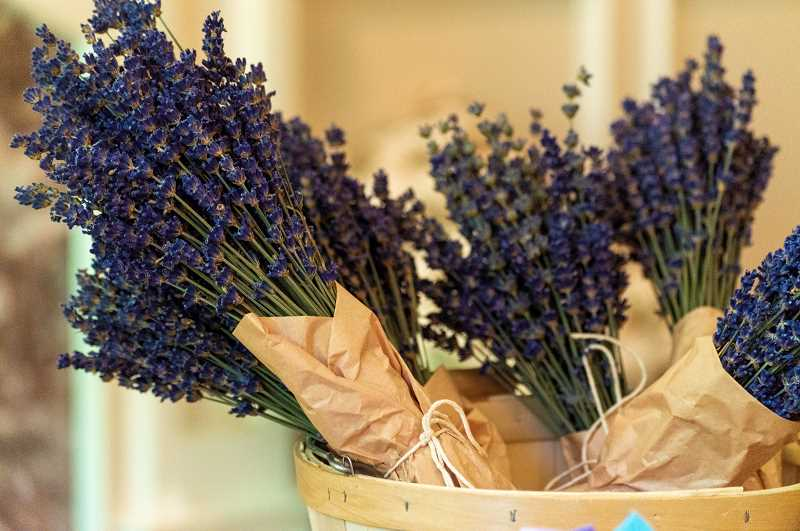 PMG PHOTO: CLARA HOWELL  - The West Linn Lavender Girls will have their annual sale Aug. 17 and 18.