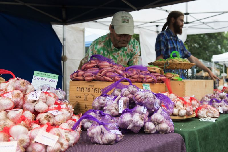 PMG PHOTO: CHRISTOPHER OERTELL - Different varieties of garlic are sold at the vendor booth area at Jessie Mays Park at the Elephant Garlic Festival in North Plains every year.