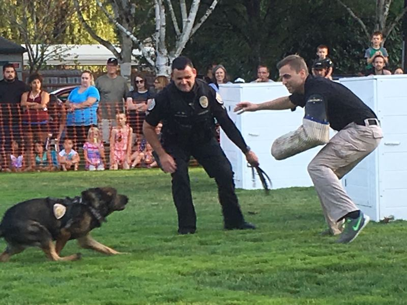 PMG PHOTO BY PETER WONG - A heavily padded Officer Dan Maurer, right, fends off an advance by police dog Rizzo while Officer Tony Bastinelli oversees a demonstration at National Night Out on Tuesday, Aug. 6, at Beaverton City Park.