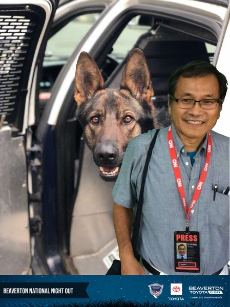 COURTESY BEAVERTON TOYOTA - Pamplin Media Group reporter Peter Wong with a Beaverton police dog at National Night Out on Tuesday, Aug. 6, at Beaverton City Park. Note: Beaverton Toyota shot photos of people against a green screen backdrop and then added the photo of the dog, so there was no live contact. Spectators later had the chance to see the dogs up close.