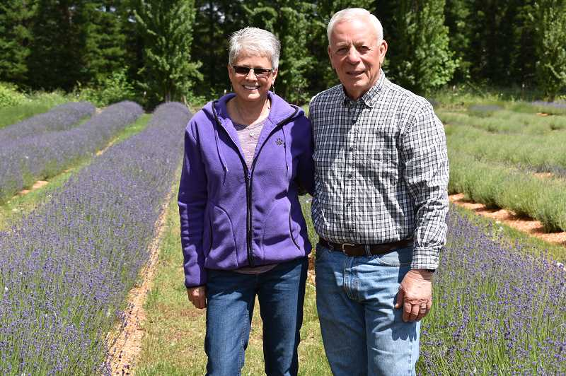 PMG FILE PHOTO - Mary and Bill Jabbs of Eagle Creek Lavender will host a Business After Hours event with the Estacada Chamber of Commerce on Thursday, Sept. 19.