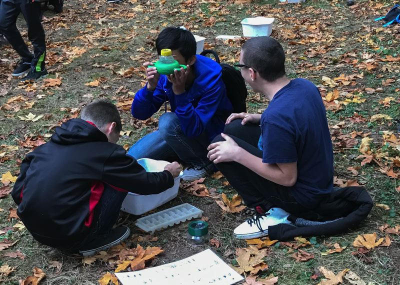 COURTESY PHOTO - Seventh-grade students from Oregon City use a magnifying device to check out life in Newell Creek water.