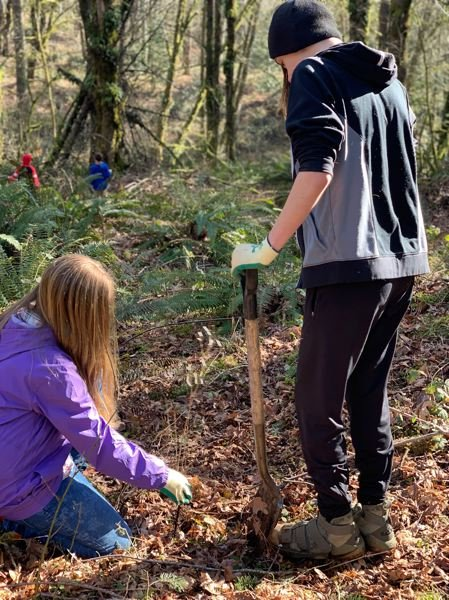 COURTESY PHOTO - Oregon City students dig holes to establish native plants in an area of the Newell Creek watershed.