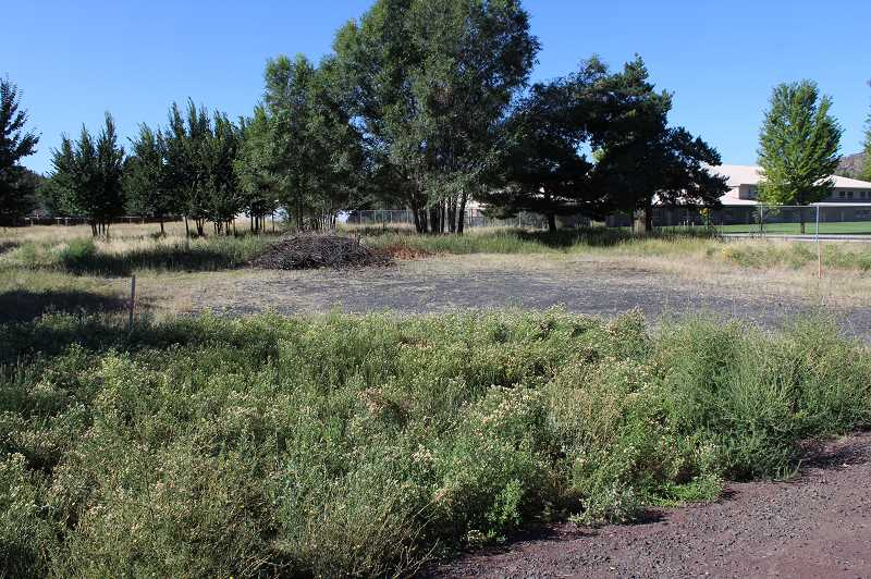 PHOTO COURTESY OF CROOK COUNTY SCHOOL DISTRICT - This land, located just east of Crook County High School, was purchased by CCSD for $300,000.