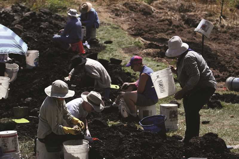 PMG PHOTO: PHIL HAWKINS - Countless volunteers from around the region provide helping hands at the annual Woodburn dig, either sifting through material by hand or with metal screens.