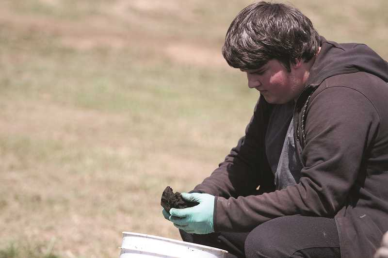 PMG PHOTO: PHIL HAWKINS - Canby High School student Caleb Payne sifts through a chunk of dirt to separate the soft material and feel for the small, harder bones present in the soil.