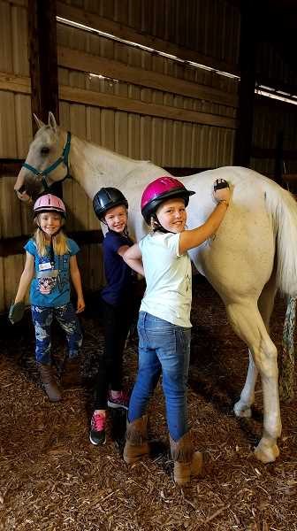COURTESY PHOTO - Rose Bissig, left, Kasia Marks and Elsie Bauer groom the horses at Oregon Horsemanship.