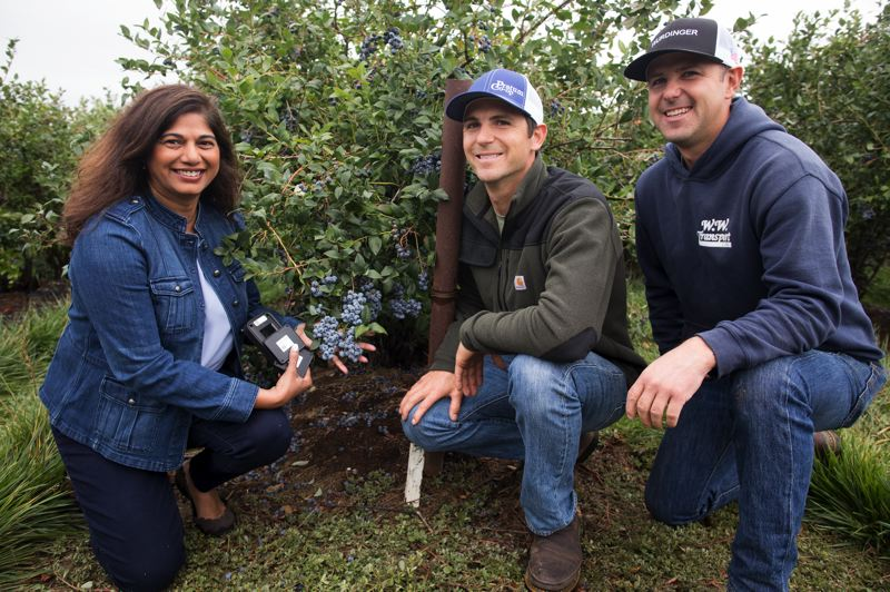 PAMPLIN MEDIA GROUP: JAIME VALDEZ - Ninette Vaz, Intel Global Supply Chain IoT Senior Manager and Sinn Farms co-owners Darwin Sinn and his brother Kenton. The farmers are tech friendly and interested in Intels supply chain logistics if they are hooked up to blockchain. For the pilot they did not have to invest in hardware or software.