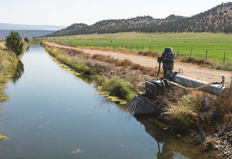 LON AUSTIN - Many different portions of the Ochoco Irrigation District's system are being studied for potential piping.
