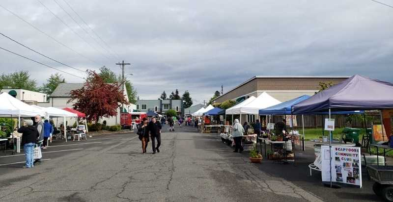 (Image is Clickable Link) The Scappoose Community Club helps host the Scappoose Farmers Market in the summers. The market brings together vendors and farmers to sell their wares. The program has been expanding in recent years.