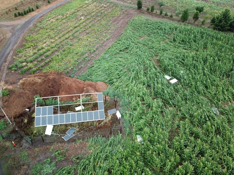 COURTESY PHOTO: JIM KESSINGER - An aerial photo shows solar panels strewn about what remains of the corn maze at Plumper Pumpkin Patch & Tree Farm after a tornado hit the business near Cornelius Pass on Sunday, Sept. 8.