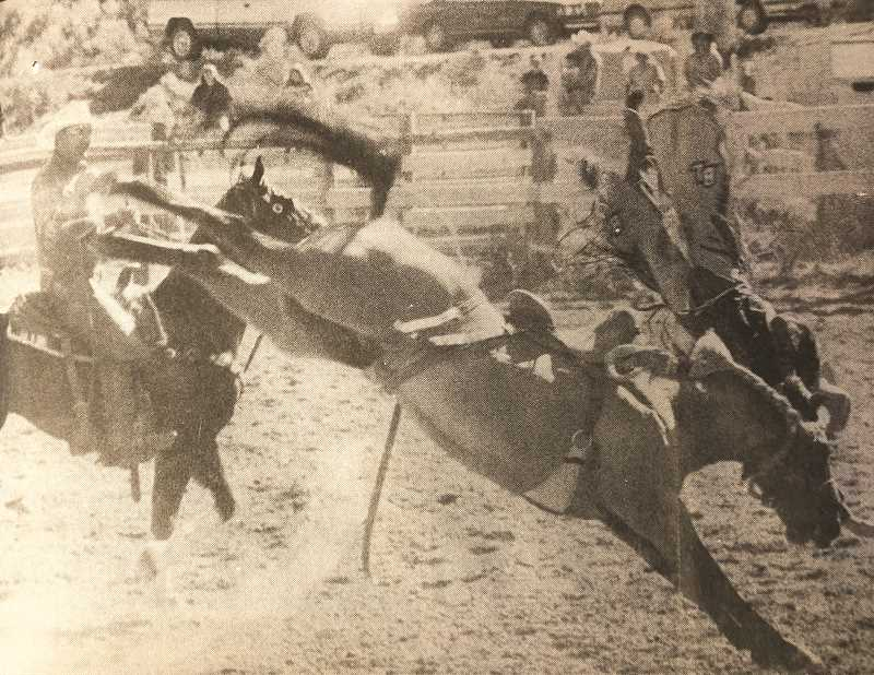 CENTRAL OREGONIAN - SEPTEMBER 8, 1994: RODEO TRICK – Saddle bronc rider Brent Lyons apparently is head over heels in love with his sport during the Paulina Rodeo.