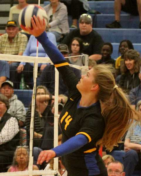 STEELE HAUGEN/MADRAS PIONEER