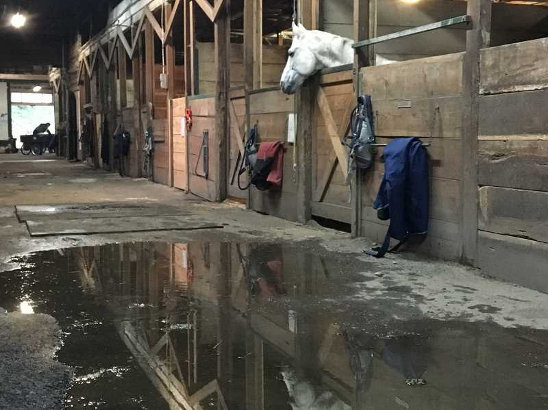 COURTESY PHOTO: KERRY GRIFFIN - A large puddle forms inside after a downpour.