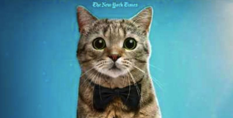 Felines and canines are stars of film fest coming to Tigard