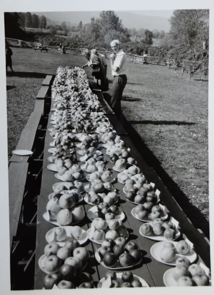 PHOTO COURTESY OF THE OREGON HISTORICAL SOCIETY - This photo from 1971 shows a past Wintering In event on the island. The events were similar to harvest festivals, and the Sauvie Island Jubilee this year is being held in the same spririt of the past events.
