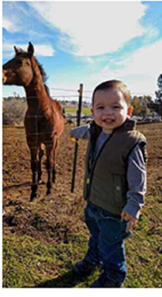 SUBMITTED PHOTO - Just before his traumatic brain injury, Ezra, 2 1/2 at the time, was a happy and healthy boy.