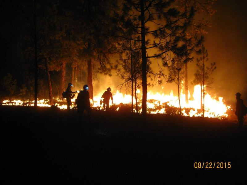 COURTESY PHOTO - Firefighters battled the 2015 County Line 2 fire in Central Oregon. State officials could be asked to update the way Oregon fights wildfires.